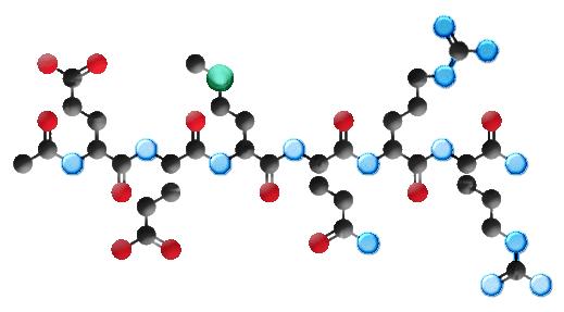 argireline-peptide-molecula -- Молекула гексапептида Аргирелин. Обладает малыми размерами, а потому легко проникает сквозь кожный покров и действует изнутри. Компонент крема Instantly Ageless от Jeunesse Global. Рисунок с сайта jeunesse-instantly-ageless.com