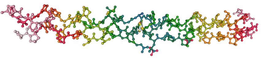 human collagen moleculac